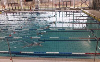 Sukcesy naszych pływaków!